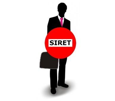 SIRET and customer group